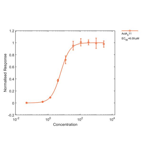 Human Activin Qk001 protein bioactivity lot #011