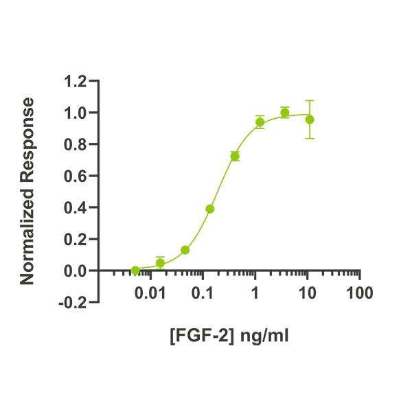 Human FGF2/bFGF Qk027 protein bioactivity lot #012