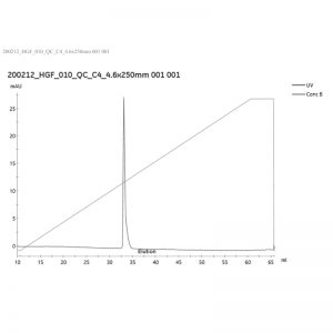 Recombinant human HGF (NK1) protein purity analysed by reverse phase chromatography