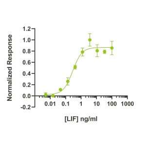human-lif-Qk036-protein-bioactivity-lot-14293