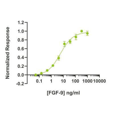 Human BMP4 Qk038 protein bioactivity lot #104294