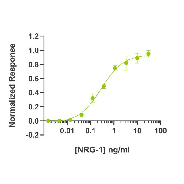 Human LIF Qk036 protein bioactivity lot #14293